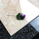 يزجّج يصقل خزي [فلوور تيل] خزفيّ من الصين ([سد6005])