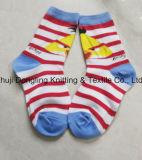 La muchacha embroma calcetines del tubo de los calcetines del bebé de los calcetines