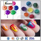 3D Pigments à ongles magnétique