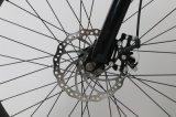 Vélo électrique de saleté de montagne de 26 pouces avec la grosse roue de pneu