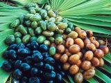 Saw Palmetto extrait pour supplément alimentaire et cosmétiques