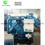 기름 자유로운 CNG 천연 가스 승압기 압축기