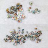 De Rozentuin van de Parels van Multcolours, de Plastic Reeksen van de Rozentuin, de Kleurrijke Halsband van de Rozentuin en Armband (iO-Crs001)