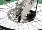 スウェーデン26人の28インチのBafang不安定な駆動機構モーター電気Eバイクの女性