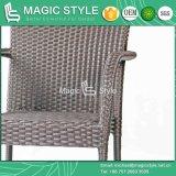 Président de promotion Hot Sale Chaise en rotin Table à manger chaise de jardin (Magic Style)