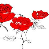 Картина маслом Rose красного цвета напечатанная Inkjet для домашнего украшения