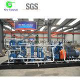 Compressor Patim-Montado comprimido do gás natural CNG para a estação padrão do reabastecimento
