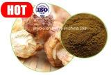 Agaricus Blazei 순수한 자연적인 추출 또는 다당류 20%-50% 의 10:1