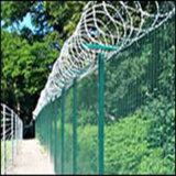 Anping Tianyue Hot Sale ! La compensation des clôtures de barbelés (TYE-04)