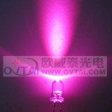 Super Bright 5mm Round Pink LED Lamp Diode, Wavelength 460470nm, 5000-8000mcd