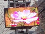 Diodo emissor de luz Screen com The Most Reliable Quality