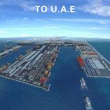 Serviço de logística do agente de navegação a partir de Guangdong para Abu Dhabi