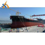 41000dwt buque granelero