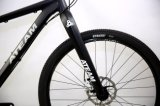 Bicicleta de montanha da fábrica 29er Deore 1*10 da bicicleta (MTB27)