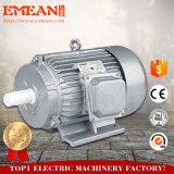 Электрический двигатель серии на-Сбывания Y2 асинхронный трехфазный от Китая
