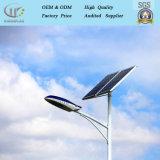Brazo simple/doble precio de la competencia de la calle de acero inoxidable poste de luz