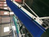 Systeem van de Transportband van de Riem van de Rang van het Voedsel van Hairise het Modulaire met ISO