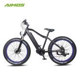 Estrutura robusta de bicicletas eléctricas Ebike Praia com bateria ocultos