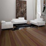 Sofà di cuoio della mobilia 1+2+3 domestici moderni (L070)