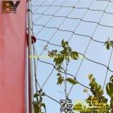 Sistemas que suben de la cuerda de acero del verde del paisaje inoxidable de la pared y de la planta Greening