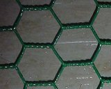 Galvanized Hexagonal and PVC Wire Mesh Factory