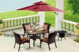 /Rattan extérieur/présidence et Tableau de rotin meubles de jardin/patio/hôtel mis (HS 1220C&HS 6601DT)