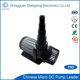 Pompes de piscine de la bonne qualité 24V BLDC