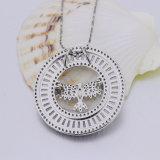 925 de zilveren Juwelen van de Vrouwen van het Zirkoon om de Tegenhanger van de Vorm
