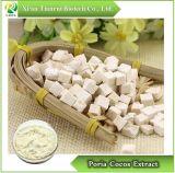 Extrait de Poria cocos, poudre 10 : 1 20 1/ : Pachyman 20% 30% 50%