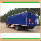 Caminhão da carga geral de Isuzu com cauda traseira