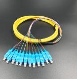 광섬유 12의 코어는 광섬유 자료 전송 통신망을%s 떠꺼머리를 도약한다