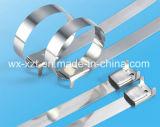 Fascette ferma-cavo rivestite L tipo dell'acciaio inossidabile del PVC