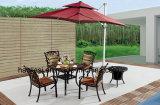Tableau extérieur/de jardin/patio rotin/fonte d'aluminium avec le dessus de table HS7132dt