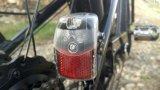 Modo e vendita calda delle biciclette elettriche fredde di stile