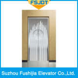 Elevatore dell'interno della villa del passeggero di Fushijia per la costruzione di residenza