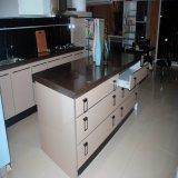 Land-Art-Qualitäts-Küche-Schrank