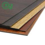 Module de cuisine en bois/panneaux stratifiés de douche