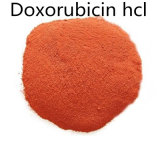Doxorubicin HCl 분말 CAS 25316-40-9의 공장 99% 순수성