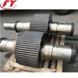 Vis de vidange d'alimentation hydraulique de rouleau double le compactage de machine à briquettes/ sulfate d'ammonium chlorure