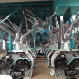 Norma Europeia 60t/D Linha de moagem de farinha de trigo