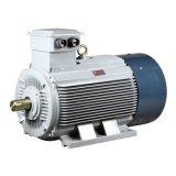 Y2 Roheisen asynchroner Wechselstrom-elektrischer Dreiphaseninduktions-Wasser-Pumpen-Luftverdichter-Getriebe-Motor
