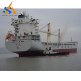 nave da carico dell'elemento portante all'ingrosso 52000dwt