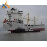 Frachtschiff des Massengutfrachter-52000dwt