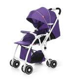 Baby-Spaziergänger mit Bescheinigungen und Qualität