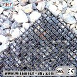 20mmの開始高炭素の粉砕機の金網