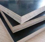 La película del Junta-Dedo hizo frente a la madera contrachapada, madera contrachapada 1220*2440*18m m de la construcción