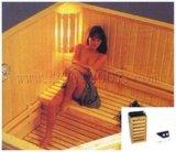 De droge Zaal van de Sauna