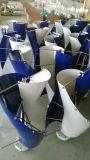 generatore di vento verticale di alta efficienza di 100W 12V 24V sulla vendita (DG-SV-100W)