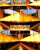重力センサーが付いているLEDの炎の球根ライト、上向きの下りの炎のモード