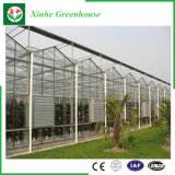 Estufa Growing do vidro da extensão de Muti dos vegetais da fruta da flor